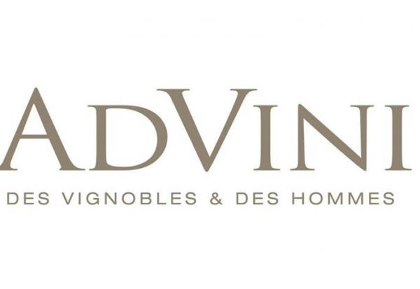 Advini acquiert la majorité de Stellenbosch Vineyards