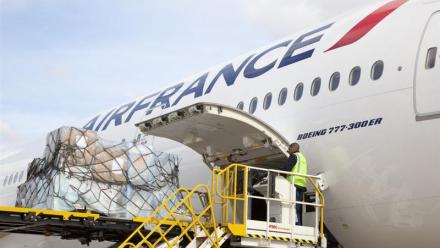 Air France KLM : 49% de Malaysia Airlines?